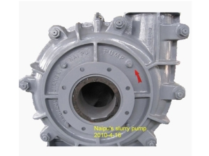 NZJL Light-duty Slurry Pump